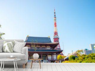 zojoji temple,tokyo,tourism of japan(増上寺)