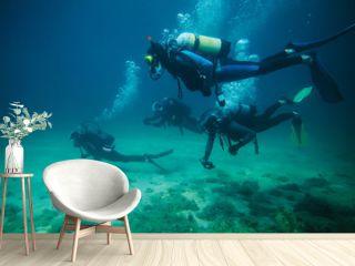 Four divers underwater