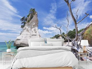 Cathedral Cove beach on Coromandel Peninsula