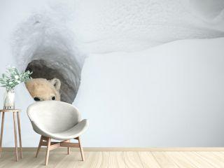 The polar bear looks out of a snow den