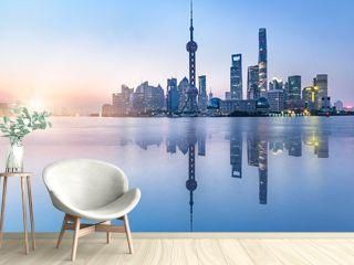 beautiful scene of the bund,shanghai,china.