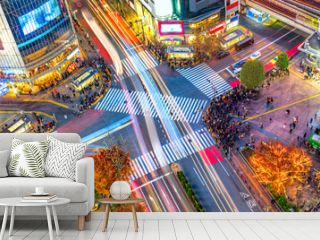 Aerial view of Shibuya District and Shibuya Crossing, Tokyo.