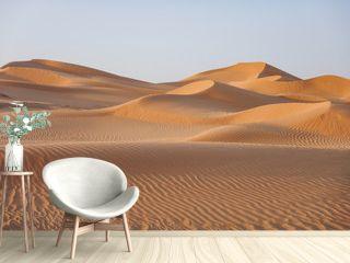 Wüste im Oman in goldenes Licht getaucht