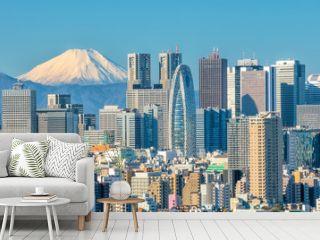 Tokyo skyline and Mountain fuji