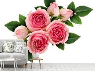Pink rose flowers arrangement