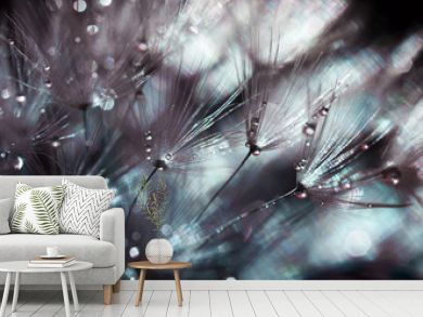 shimmering beautiful backdrop of fluffy seeds of dandelion in shining drops of morning dew
