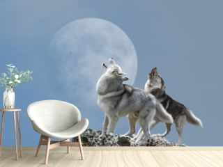 A pair of wolves singing their melancholy song for the moon