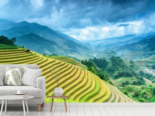 Rice field on terrace Mu Cang Chai Yen Bai,Vietnam