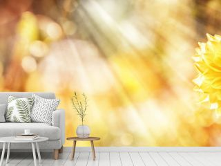 Yellow Dahlia, Bee, Summer Background