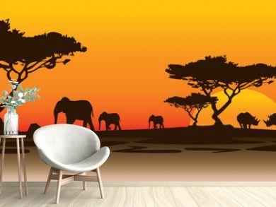 rhino landscape africa