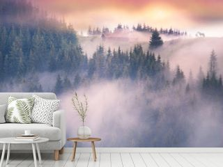 the foggy Carpathians