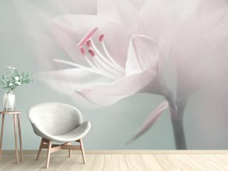 single dreamy surreal white flower