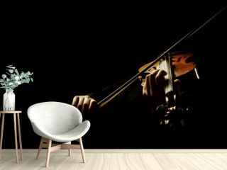 Violin player. Violinist playing violin hands bow