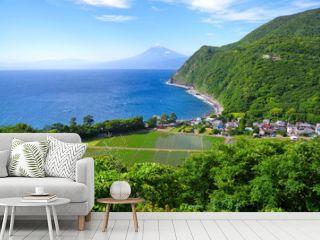 西伊豆の海岸と富士山