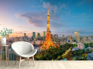 City view with Tokyo Tower, Tokyo, Japan