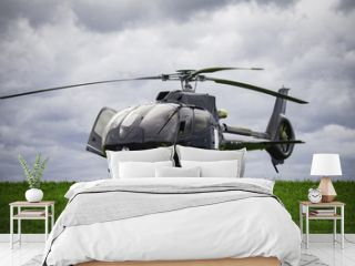 Black helicopter standing on the green grass