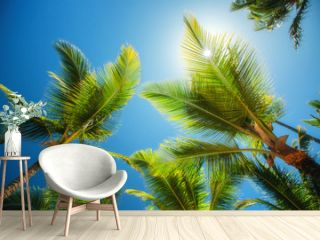 Coconuts palm tree perspective view. Nature background. Wallpaper.