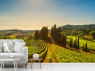 Casale Marittimo village, vineyards and landscape in Maremma. Tuscany, Italy.