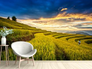Rice fields on terraced of Chiangmai, Thailand. Rice fields prepare the harvest at North Thailand. Thailand landscapes
