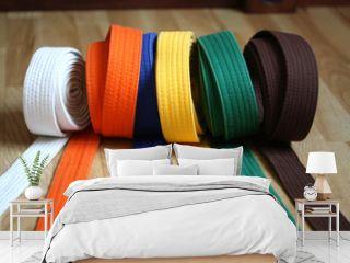 Martial Arts Colorful Karate Belt