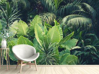 palm trees, jungle  - tropical plants background