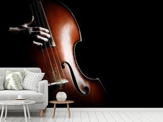 Double bass. Hands playing contrabass player musical instrument