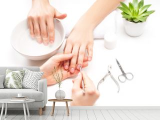 Hands care in the spa. Beautiful woman's hands with perfect manicure