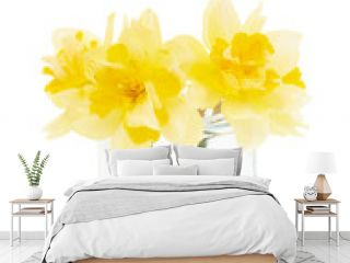 Jonquils flowers in glass isolated on white background