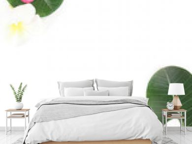 Tropical floral modern border from palm leaves and frangipani plumeria flower