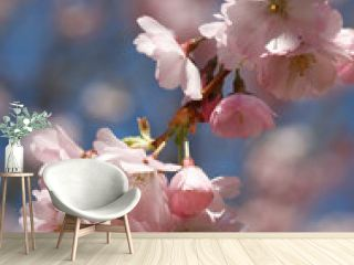 Pink Cherry Blossom Twig - closeup