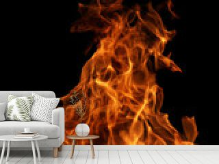 real fire texture