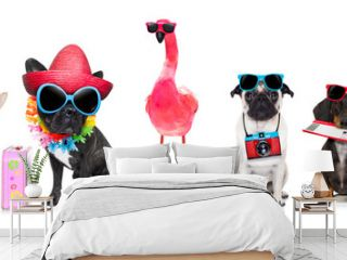 row of dogs on summer vacation