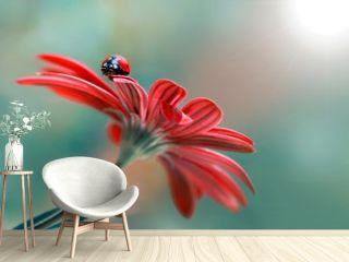 500px Photo ID: 178500237  Beautiful ladybug on leaf defocused background