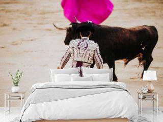 Spanish bullfight. The enraged bull attacks the bullfighter