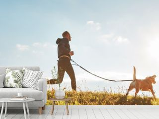 Canicross exercises. Man runs with his beagle dog at sunny morning. Healthy lifestyle concept.