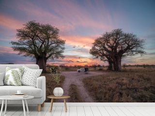 Remote campsite at Baines Baobab in Botswana