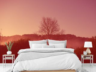Dawn in the hilly terrain, meadow landscape countryside. Autumn season. Web banner for design. Color coral tonality.