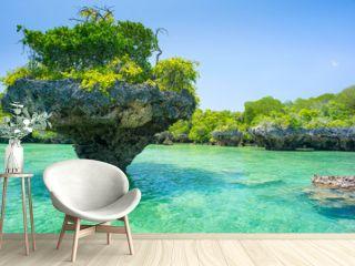 stone rock with trees in lagoon in Zanzibar