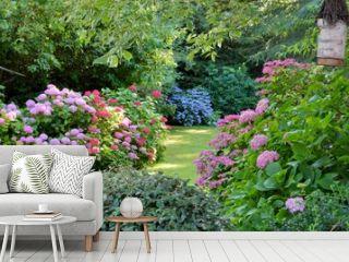 Beautiful garden with hydrangeas in Brittany