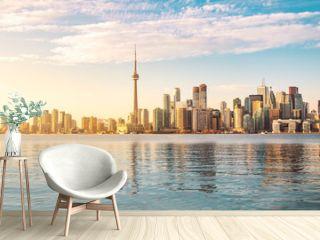 Toronto Skyline and swan swimming on Ontario lake - Toronto, Ontario, Canada