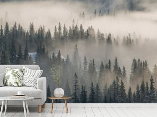 Wooded mountains shrouded in mist