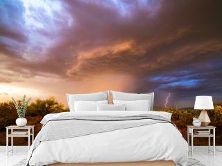 Monsoon thunderstorm in the Arizona desert