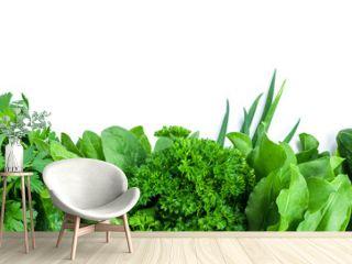 fresh green vegetables and herbs border on white background