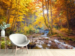 Autumn in wild forest - vibrantl forest trees and fast river with stones