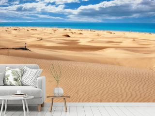 National park of Maspalomas sand dunes. Gran Canaria, Canary islands, Spain