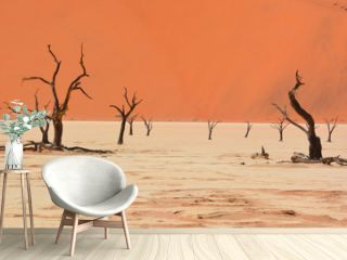 """Deadvlei is a white clay pan located near the more famous salt pan of Sossusvlei, inside the Namib-Naukluft Park in Namibia. Also written DeadVlei or Dead Vlei, its name means """"dead marsh"""""""
