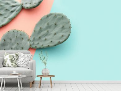 Green cactus on pastel pink and blue background, trendy summer concept, banner background with copy space