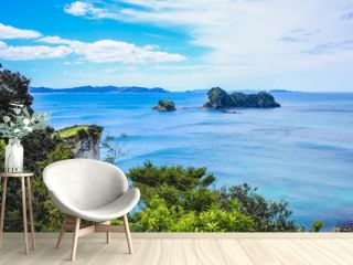 beautiful scenery on the way to Cathedral Cove on Coromandel Peninsula, North Island, New Zealand