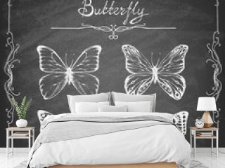 Set of hand drawn butterflies on the blackboard. Entomological collection of highly detailed hand drawn butterflies. Retro vintage style. Vector illustration.