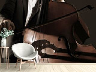 Double bass player contrabass playing. Classical musician